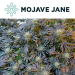 Mojave Jane Brands Inc.