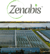 Zenabis Global Inc.